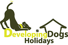 Developing Dogs Holidays